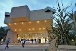 hotel  Ein Gedi Resort Dead Sea