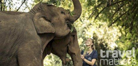 Oferte hotel Anantara Golden Triangle Elephant Camp & Resort
